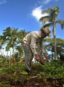 En Cuba se produce por el bienestar de la población cubana.